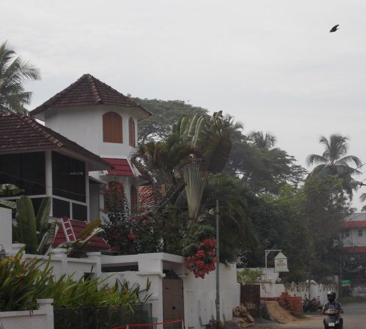 Cochin backstreet