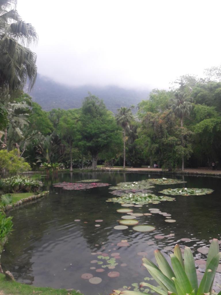 Rio Botanic Gardens